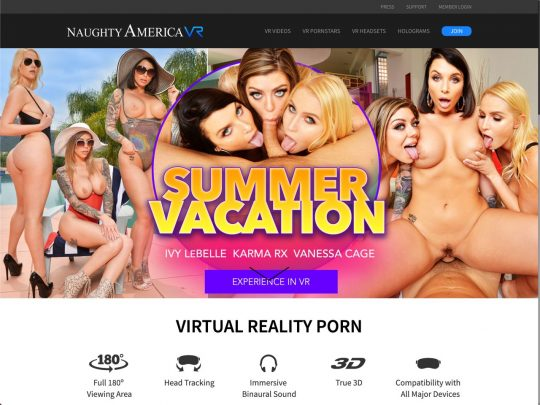 naughtyamericavr.com