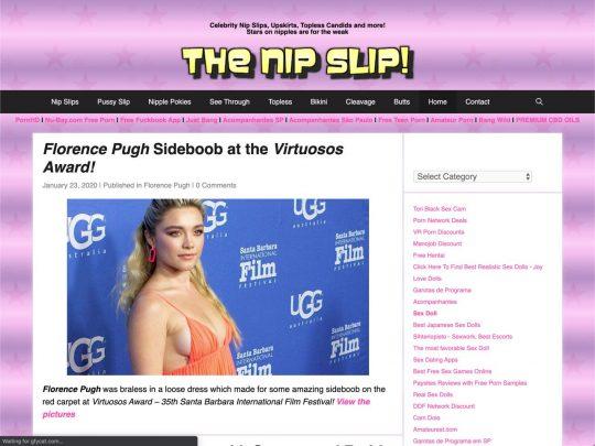 thenipslip.com